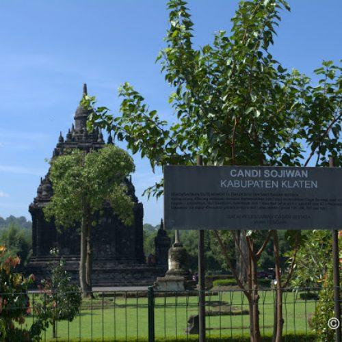 Candi Sojiwan, Candi Budhis di Antara Candi Hindu