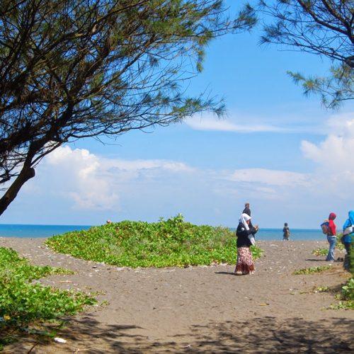 Berwisata di Pantai Goa Cemara dan Ibu Arisan