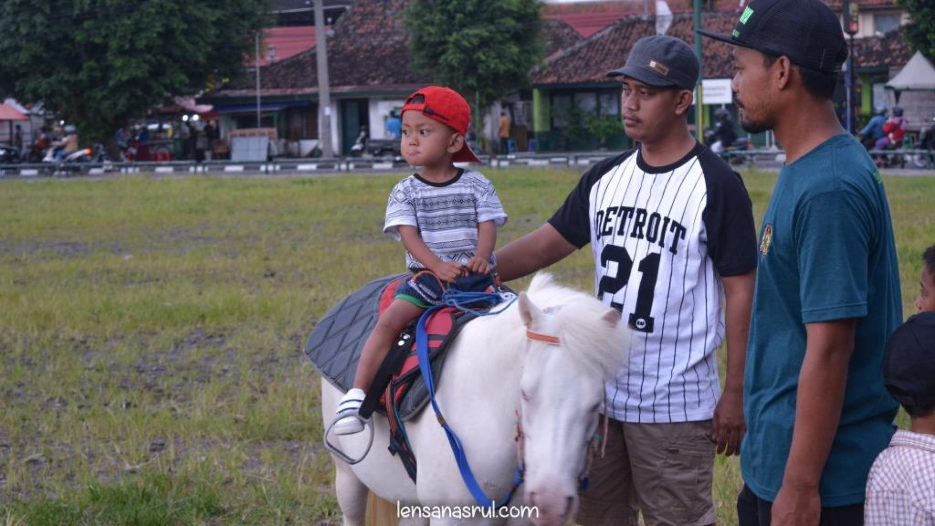 Wisata Berkuda di Alun Alun Utara Jogja