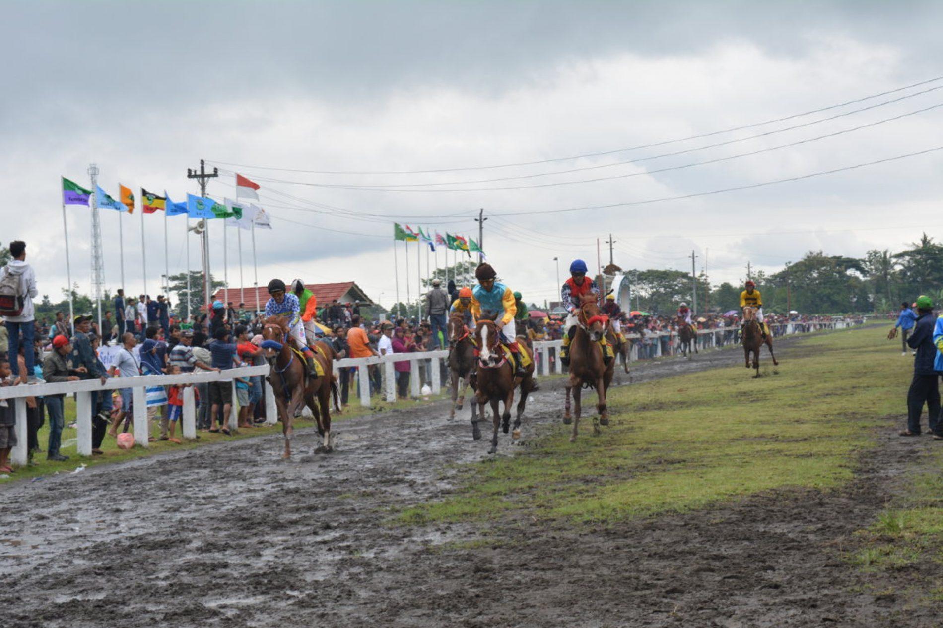 Keseruan Melihat Kejuaraan Pacuan Kuda di Lapangan Pacuan Sultan Agung Yogayakarta